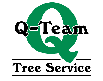 Q-Team Tree Services